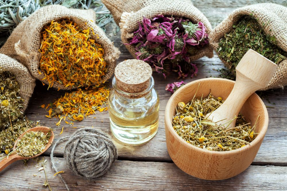 Cabinet approves MoU on medicinal plants