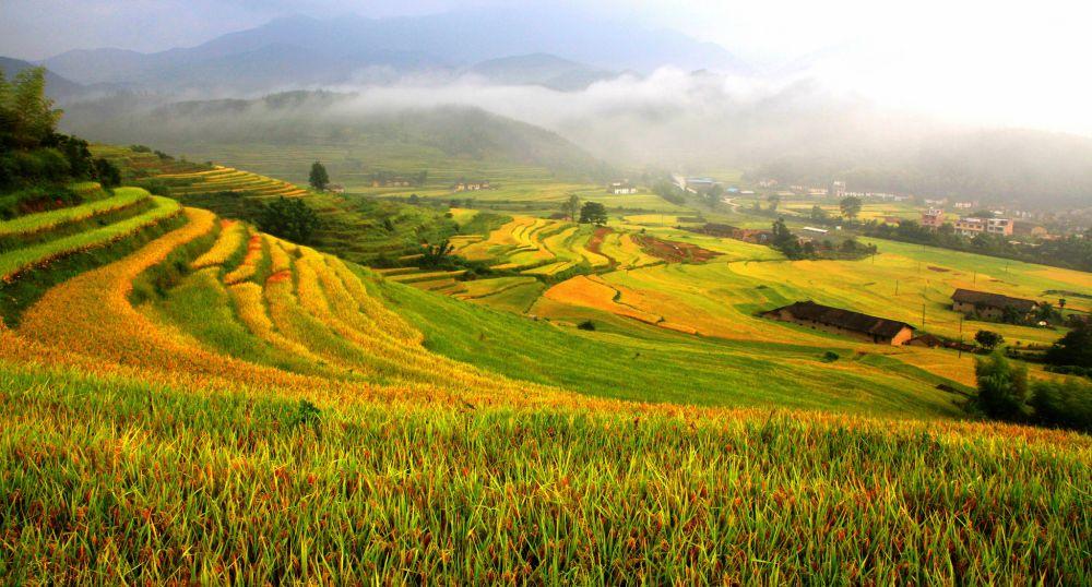 FAO designates new unique agricultural heritage sites