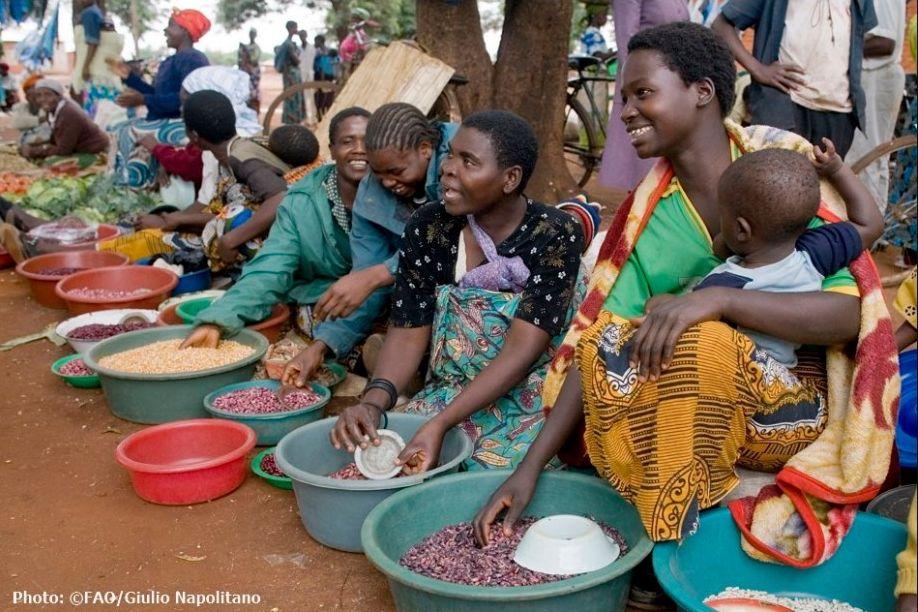 FAO, ICA renew partnership for UN Decade of Family Farming