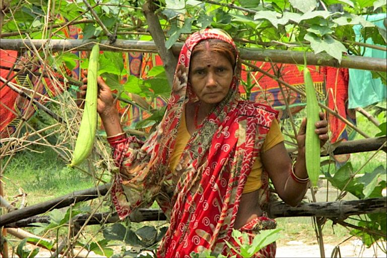 Kitchen Garden: Transforming small holder farmers