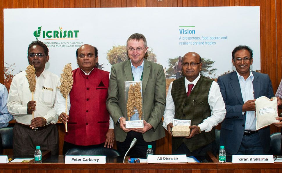 India gets first biofortified sorghum