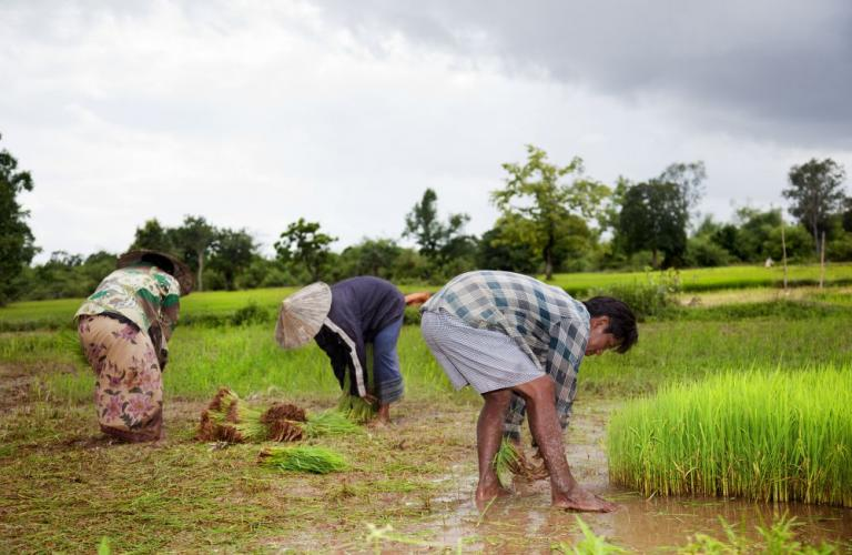 Budget assures income support to small & marginal farmers