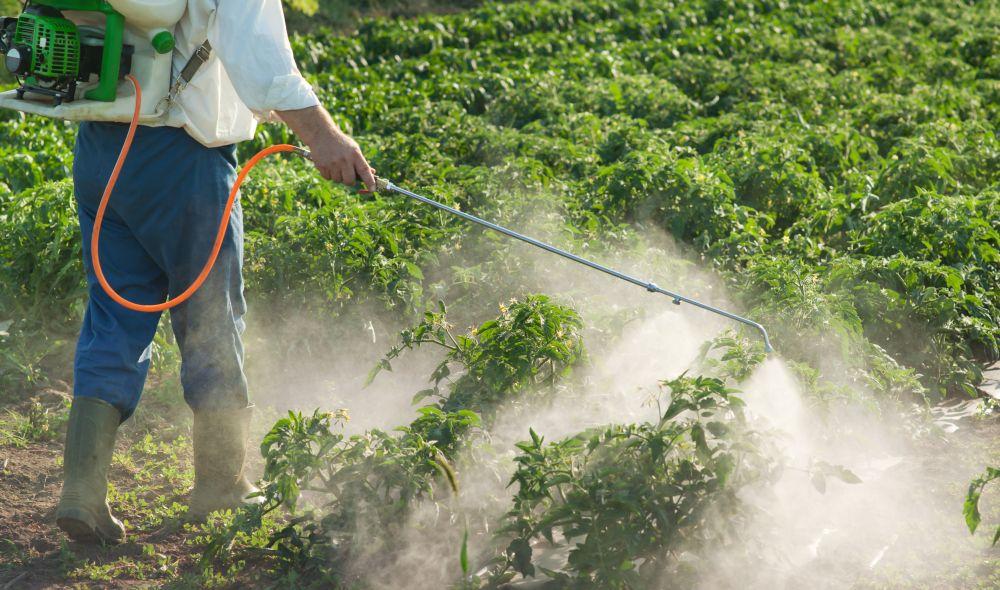 Monsoon 2019: Farm input companies seem optimistic