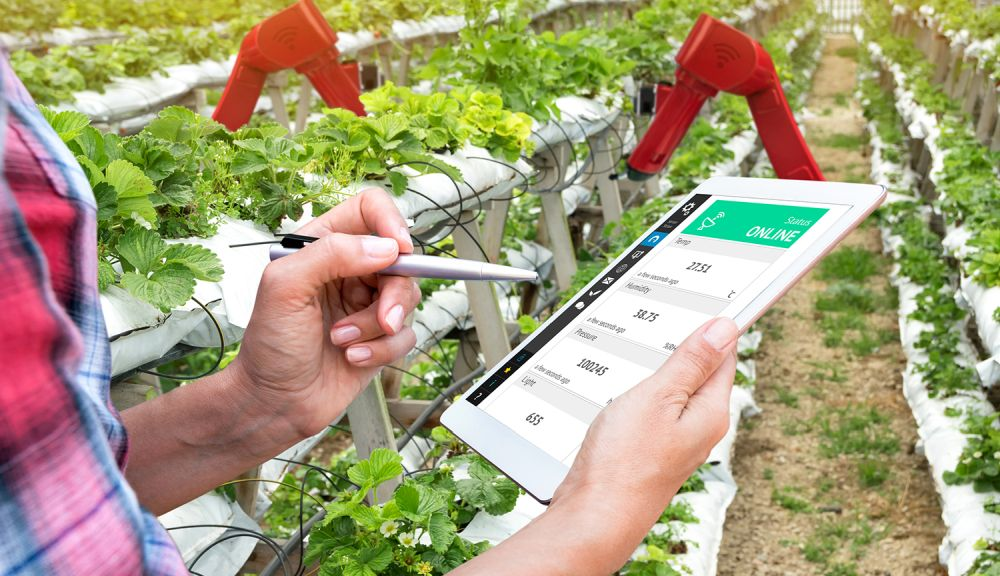 Digital technologies poised to transform agrifood systems
