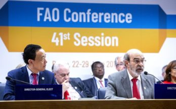 Food, agriculture must play vital part in reaching sustainable future: FAO