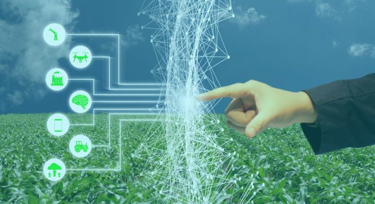 How Artificial Intelligence is making difference in agriculture