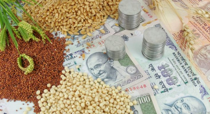 Cabinet approves MSP of all Kharif crops for 2019-20