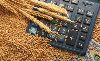 Centre announces MSP for Rabi crops of 2019-20