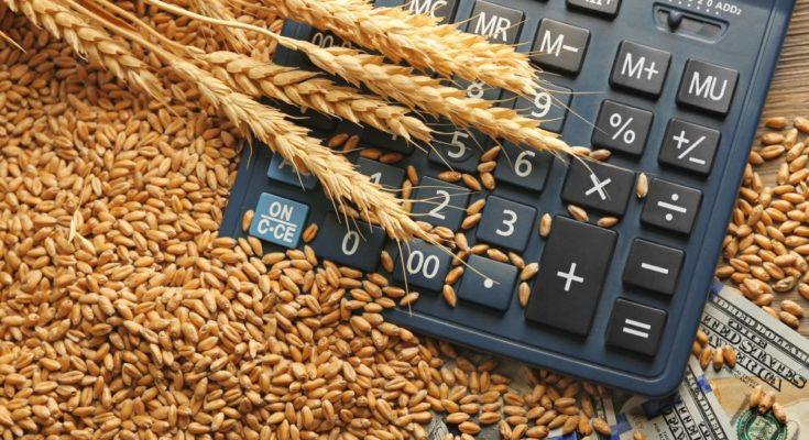 Centre announces MSP for Rabi crops of 2019-20