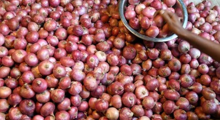Agriculture ministry relaxes fumigation norms on onion imports