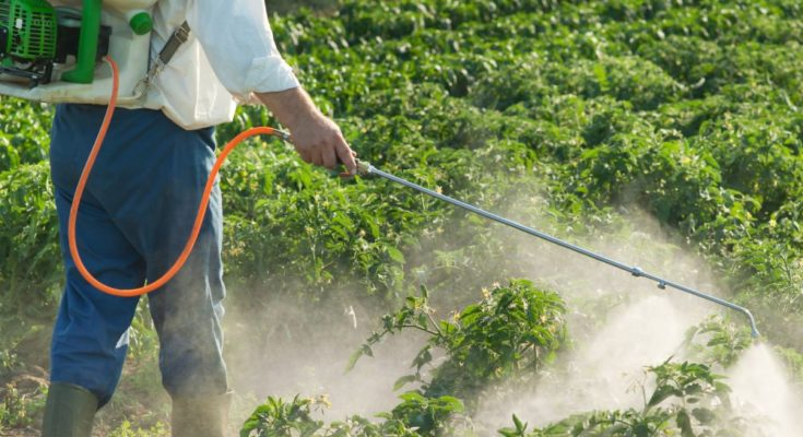 Agrochemicals are safe; fighting against diseases and climate change: Expert