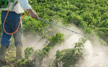Crop protection industry appeals to Govt for a phase out plan instead of banning 27 pesticides