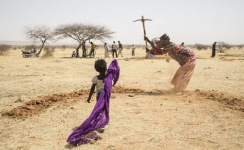 FAO calls for new approach to stop soil loss on World Day to Combat Desertification and Drought 2020