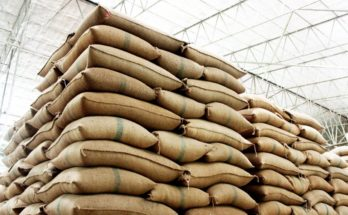 Wheat procurement by Govt agencies reaches all-time high