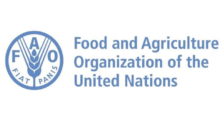 FAO Council approves new measures to reform the UN agency