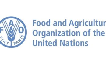 FAO DG proposes to make the organisation agile and efficient