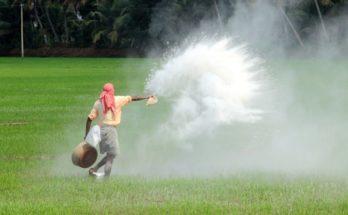India has adequate fertiliser stock for Kharif season: Minister