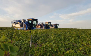 New Holland launches destemmer mesh for its Braud grape harvesters