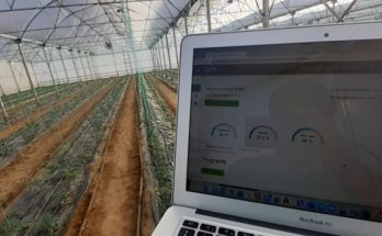 ONDO releases solution for automated drip irrigation management and control, precise plant nutrition and climate control
