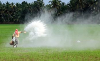 Centre assures adequate supply of urea to Telangana for Kharif season