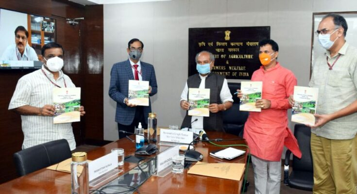 Agriculture Minister flags off National Rabi Campaign 2020