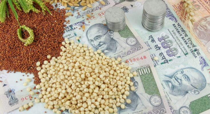 Amid farmers' protest, Cabinet approves MSP for Rabi crops for marketing season 2021-22