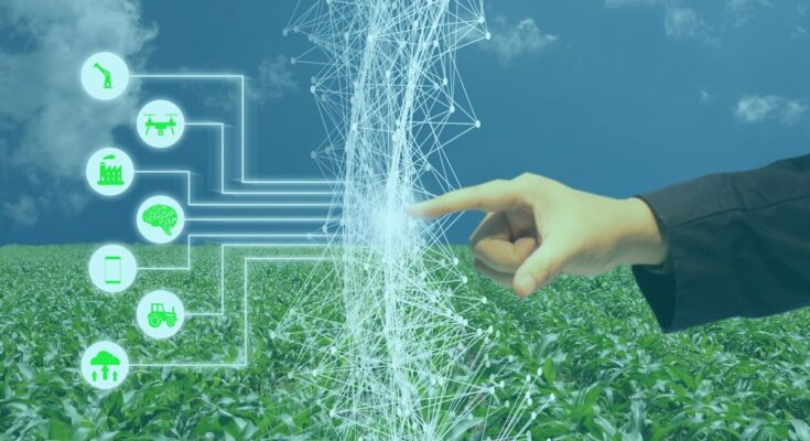 Artificial Intelligence in agriculture can help bridge digital divide while tackling food insecurity: FAO