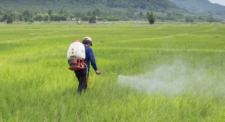Doubling custom duty on pesticide formulations will hurt farmers hard: CropLife India