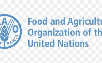 FAO to release progress report on Sustainable Development Goals on Sep 15