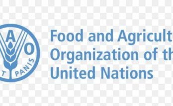FAO to release report on State of Agricultural Commodity Markets 2020 on Sep 23