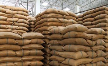 NCDC sanctions Rs 19,444 Cr for Kharif paddy procurement under MSP