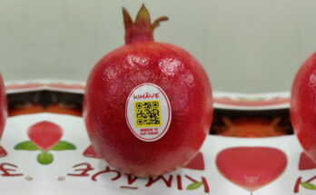 QR code makes fruits' origin traceability possible for consumers
