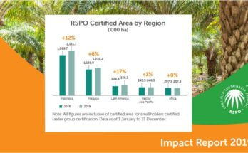 What does RSPO study say on the growth of palm oil cultivation