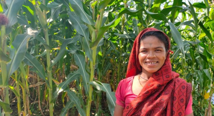 'Corteva Agriscience initiative increases farmers' income by 40%'
