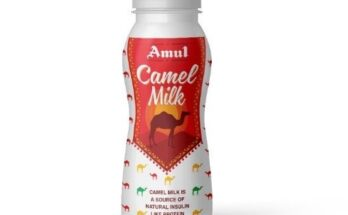 AMUL launches camel milk powder and camel milk ice cream