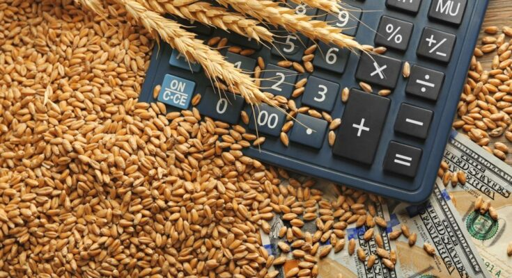 India's agri exports to US increased 15% in July 2020: TPCI