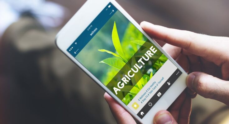10 Strategic interventions to catalyse Artificial Intelligence adoption in Indian agriculture