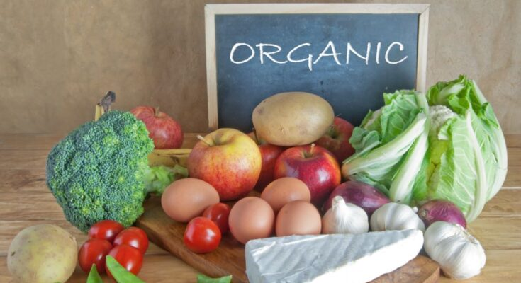 SIFCO's integrated organic food processing units to commence from Oct 2021