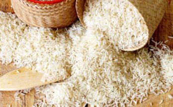 BEDF to organise workshop for increasing organic Basmati rice export