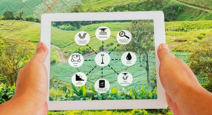 Digital innovation will transform agriculture: Senior Adviser, NITI Aayog