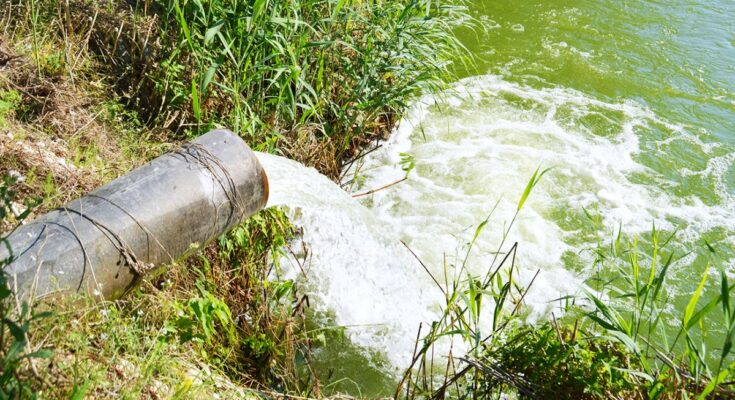 FAO: How to overcome water challenges in agriculture globally