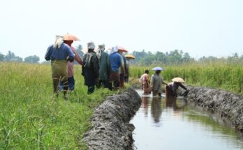 Lessons from COVID-19 crisis with respect to biodiversity and livelihood