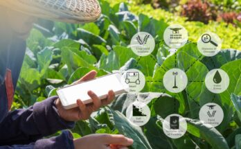 Dialogue on establishing International Platform for Digital Food and Agriculture on Dec 3, 2020