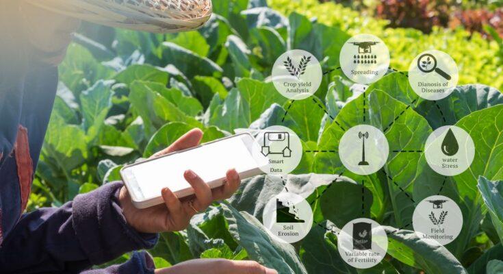 Dialogue on establishing International Platform for Digital Food and Agriculture on Dec 3, 2020