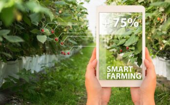 FAO's International Platform for Digital Food and Agriculture to advance farming sector