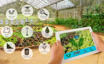Microsoft's program to accelerate growth of agritech start-ups in India