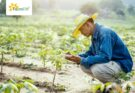 3 Ways, AgTech makes farmers of the future