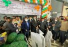 APEDA facilitates agri-exports from Varanasi to Sharjah through direct flight