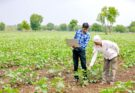Vice President of India, M. Venkaiah Naidu called for establishing strong lab–farm links and farmer–industry interaction to turn the farmers into 'agri-entrepreneurs'