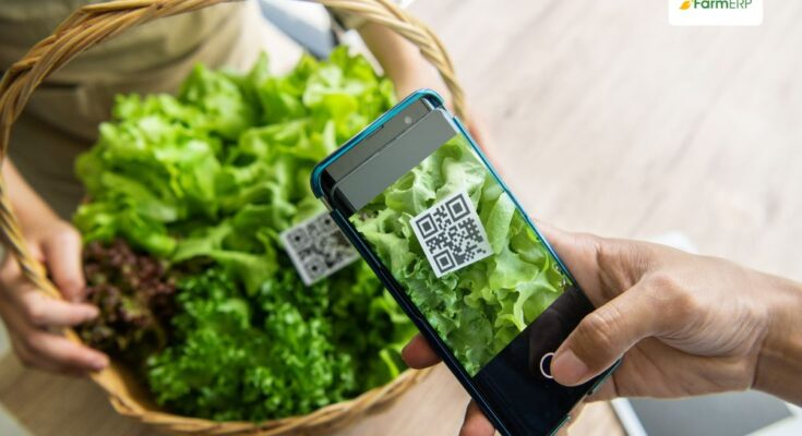 How agritech can ensure food safety and traceability